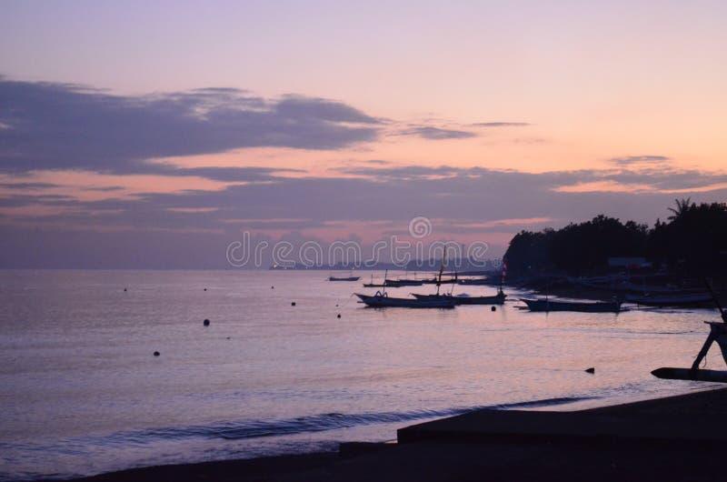 jutrzenkowe purpurowy fotografia stock