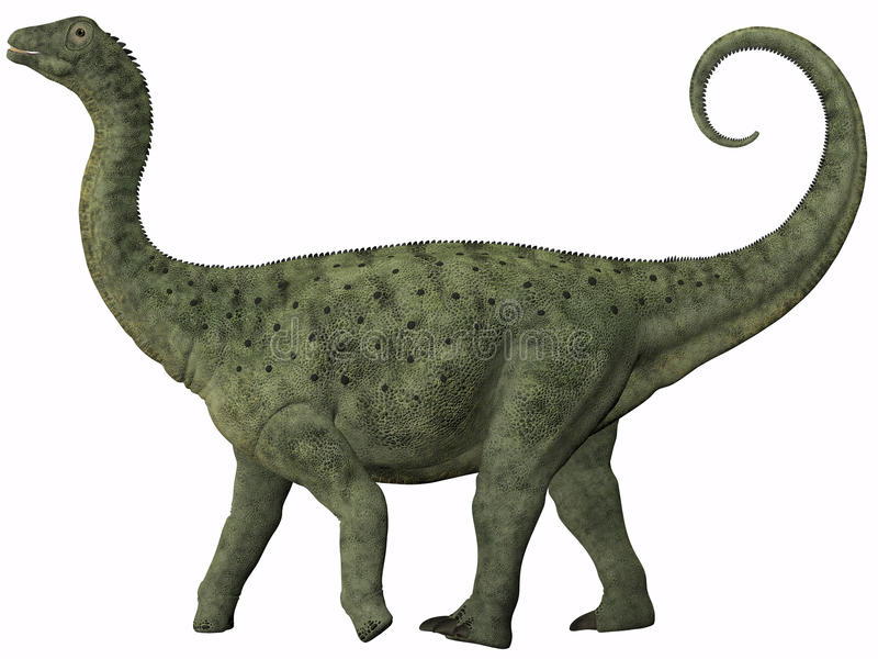 Juvenil do Saltasaurus ilustração royalty free