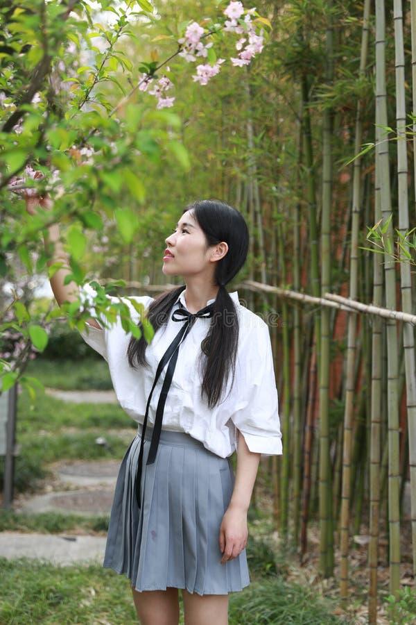 Juventude bonita adorável bonito nova feliz chinesa asiática do estudante em um jardim do parque exterior no verão imagem de stock royalty free