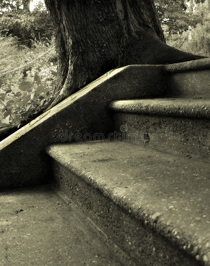 Download Juxtaposition stock image. Image of tree, journey, angle - 10191