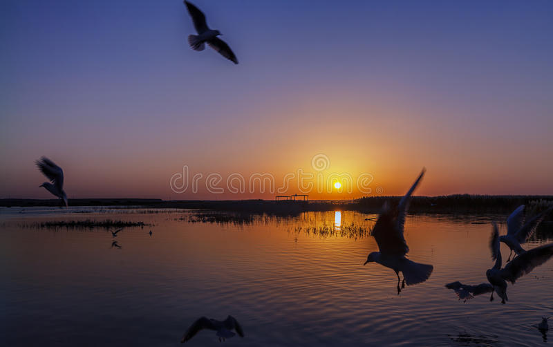 Juyanhai sunrise stock image