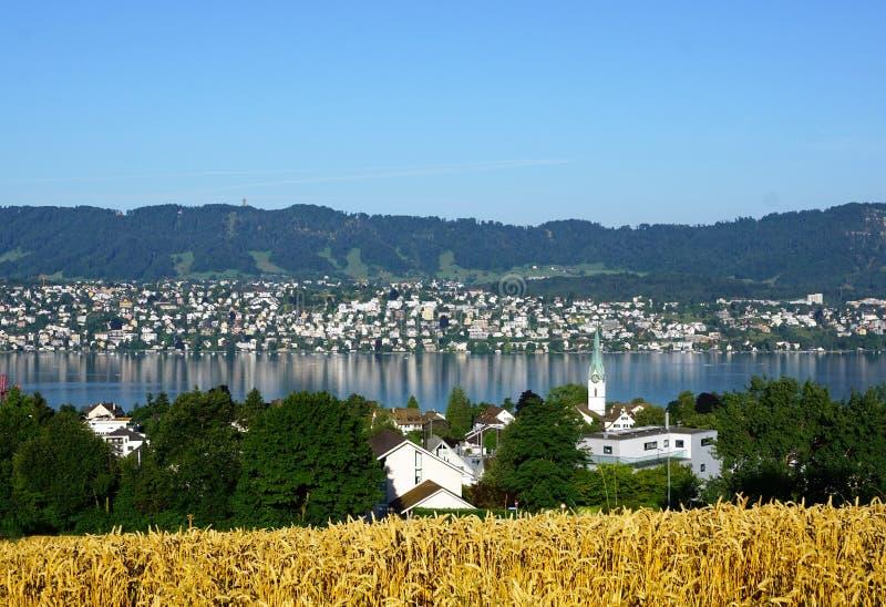 KÃ-¼ snacht bei Bodensee stockfotos