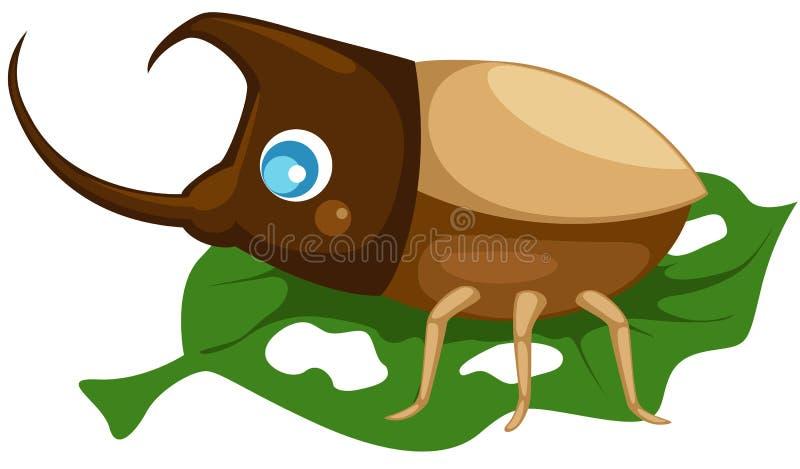 Käfer lizenzfreie abbildung