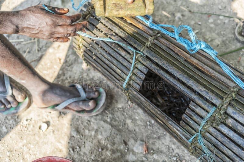 Käfig für anziehende Garnelen Afrikanerhände lizenzfreie stockfotos