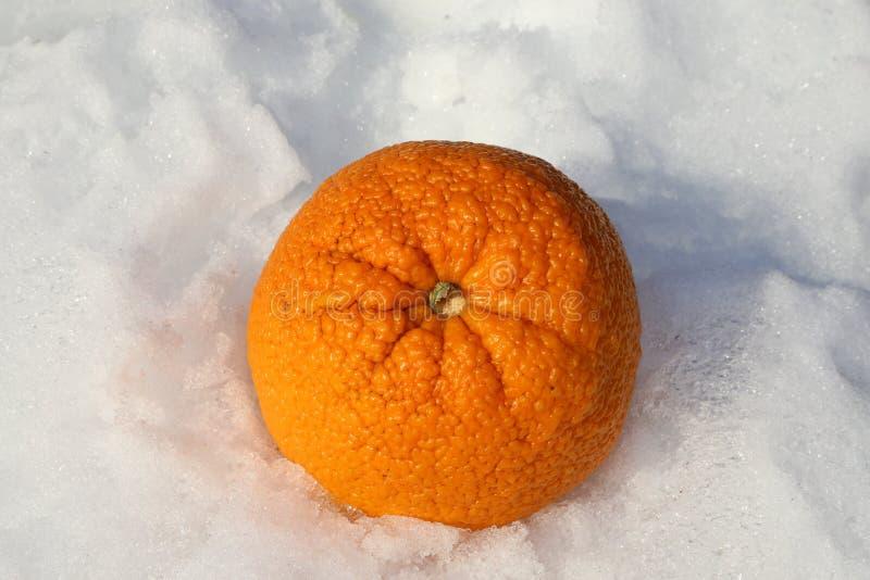 Kälte des Vitamin-c und Grippe-Saison-Geschichte lizenzfreie stockfotografie