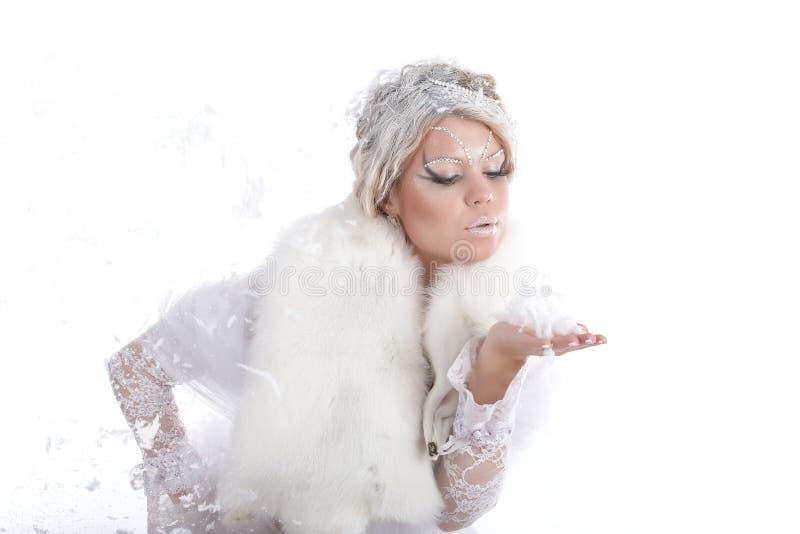 Download Kälte des Winters stockbild. Bild von frost, haar, gesicht - 12201715