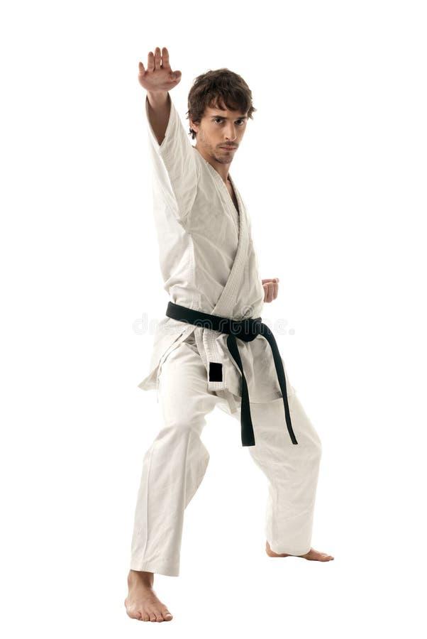 kämpe isolerat male vitt barn för karate royaltyfri foto