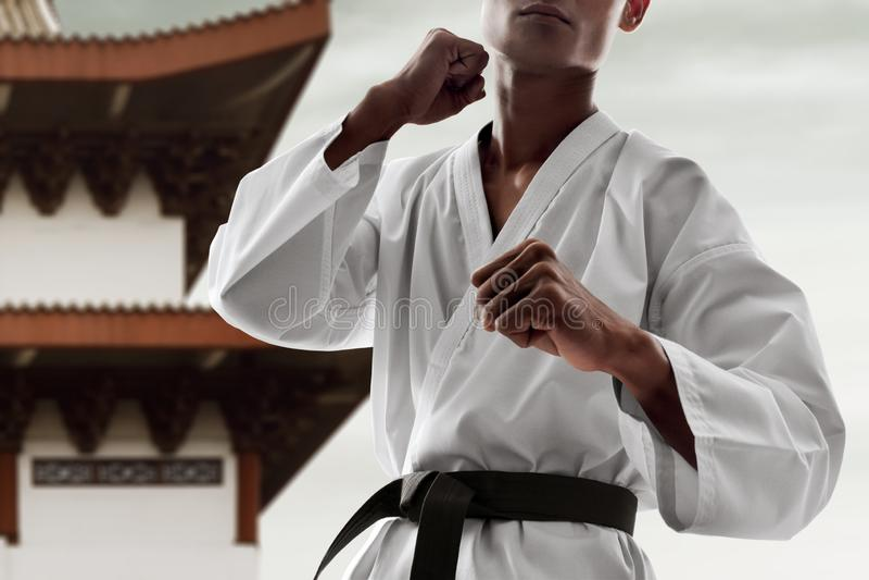 Kämpfende Haltung des Kampfkunstkämpfers stockfotografie