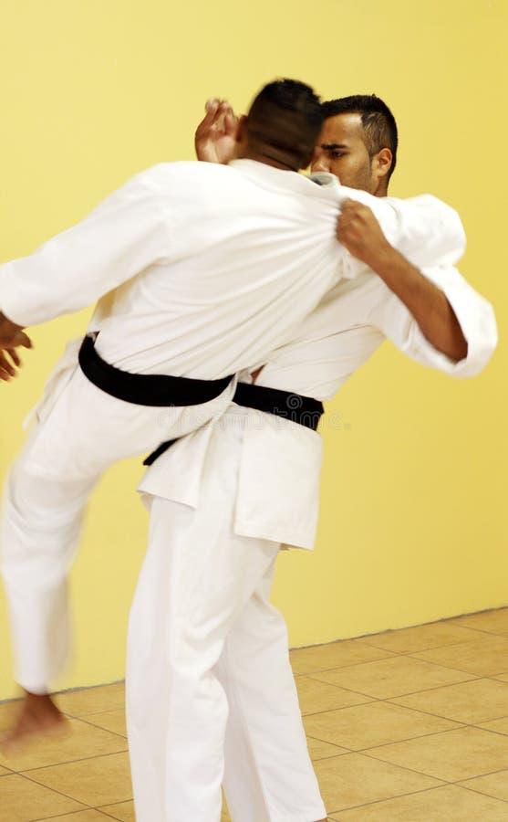 Kämpfendes Karate lizenzfreie stockfotografie