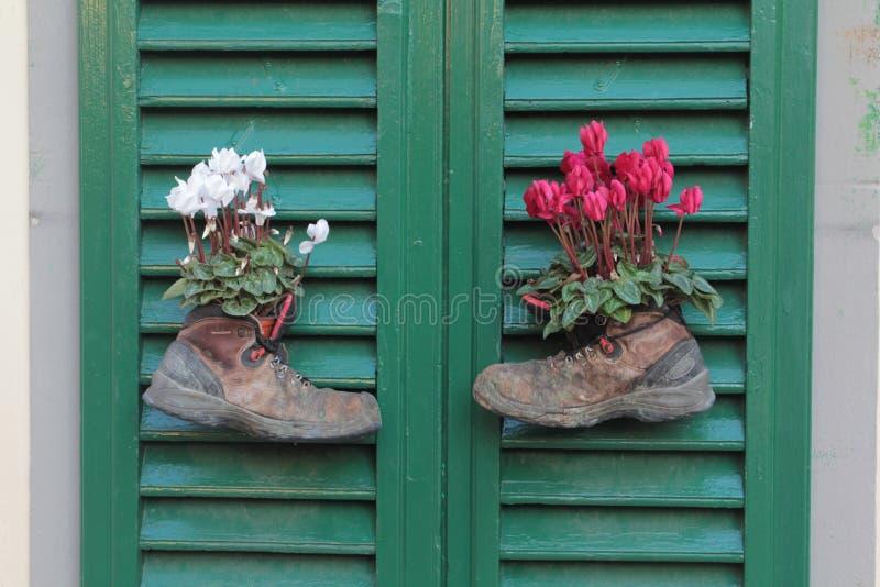 Kängor med blommor royaltyfri foto