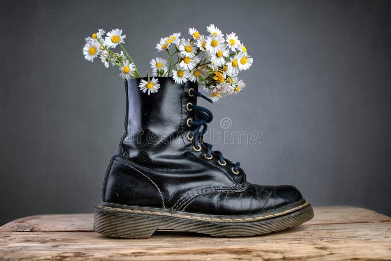 Kängor med Daisy Flowers arkivfoto