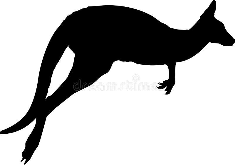 Känguru royaltyfri illustrationer