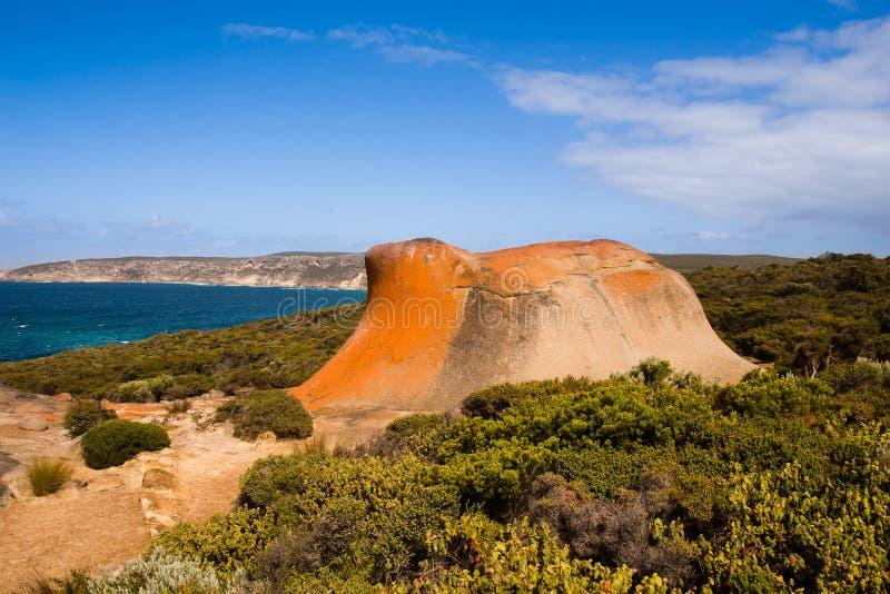 Känguru-Insel, Süd-Australien lizenzfreies stockbild