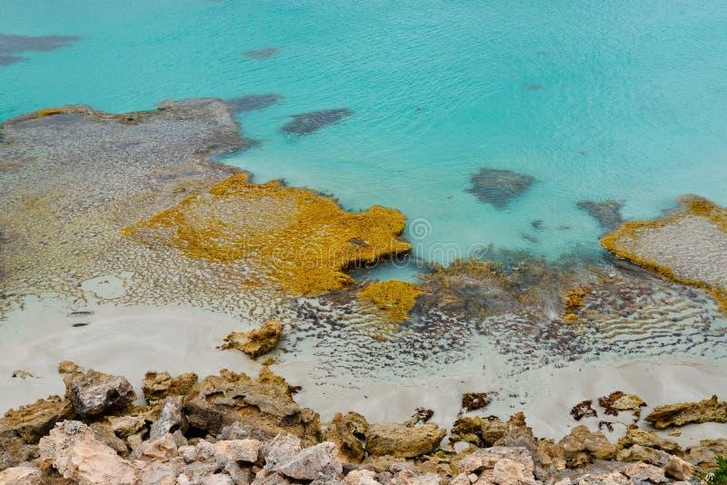 Känguru-Insel, Vivonne-Bucht lizenzfreie stockfotos