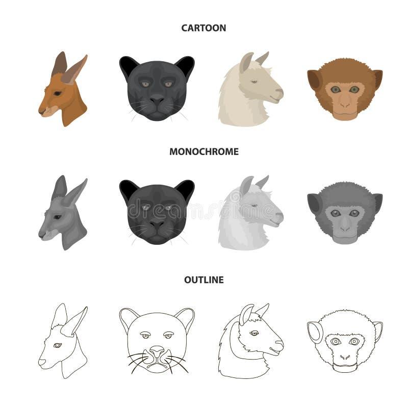 Kängurur lama, apa, panter, fastställda samlingssymboler för realistiska djur i tecknade filmen, översikt, monokrom stilvektor stock illustrationer