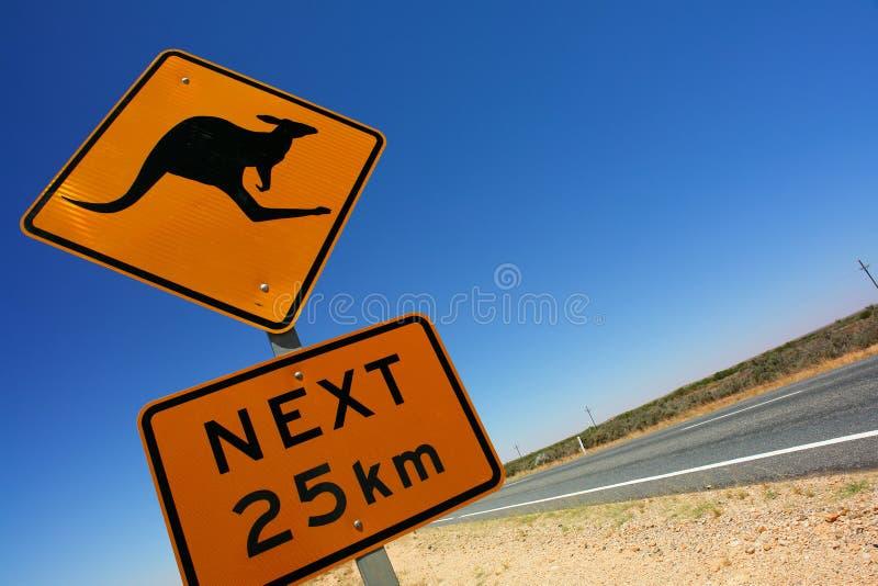kängurutecken royaltyfri fotografi