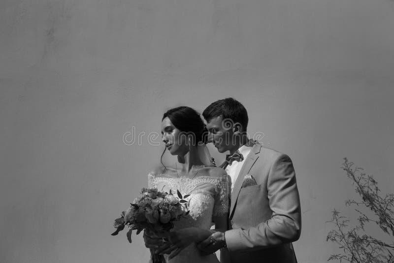 Känslig svartvit stående av nygifta personer på en monokrom bakgrund royaltyfria bilder