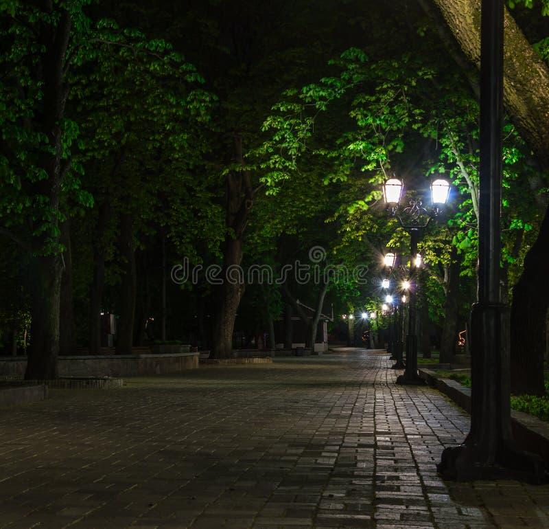 Kärlekshistorien hemtrevligt gataljus och kysser natten royaltyfria foton