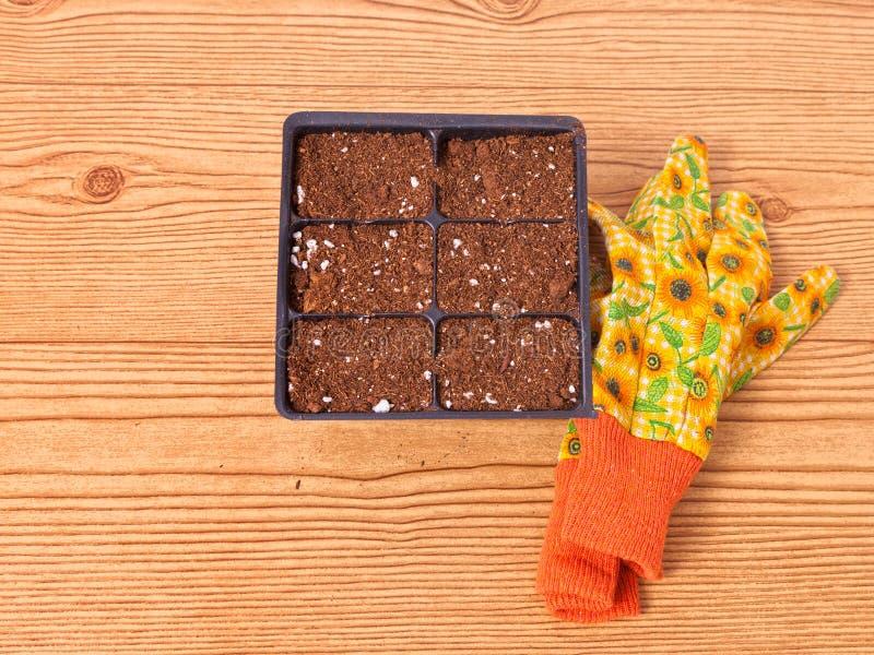 Kärna ur en cellpacke med blom- handskar royaltyfria foton