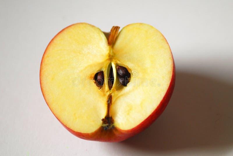 Kärna ur och kärnan, när du klippte halvan av äpplet royaltyfri bild