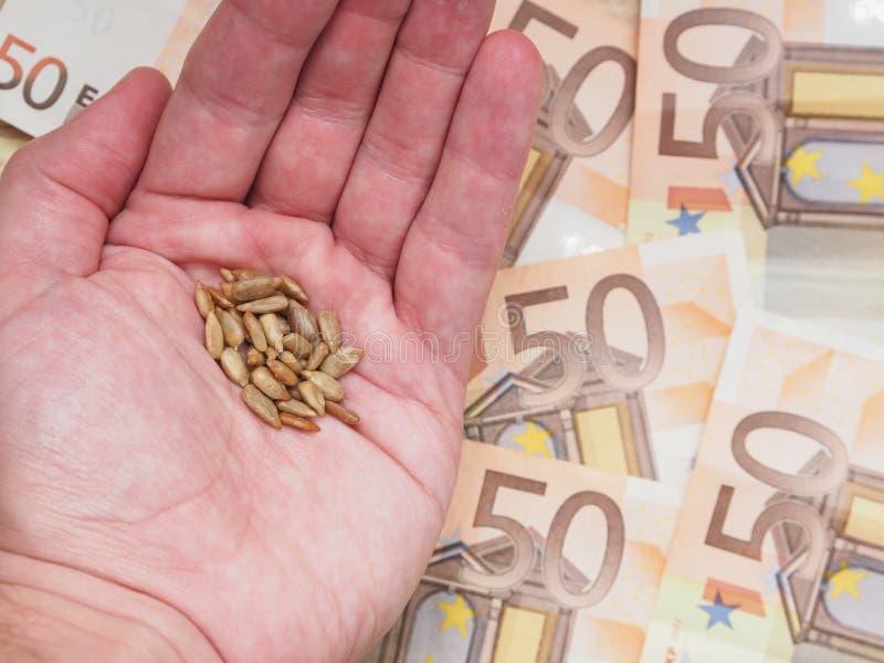 Kärna ur pengar arkivbilder