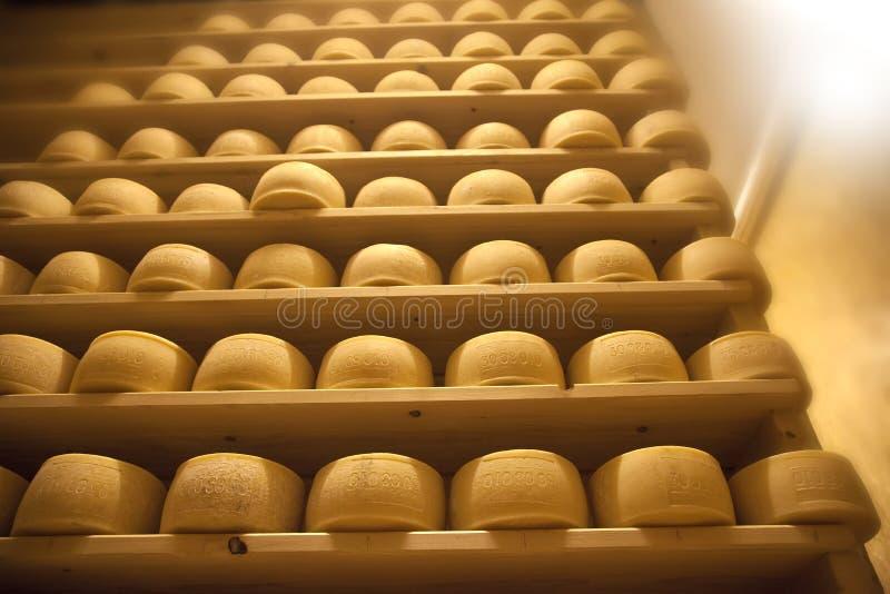 Käse auf Regal lizenzfreies stockfoto