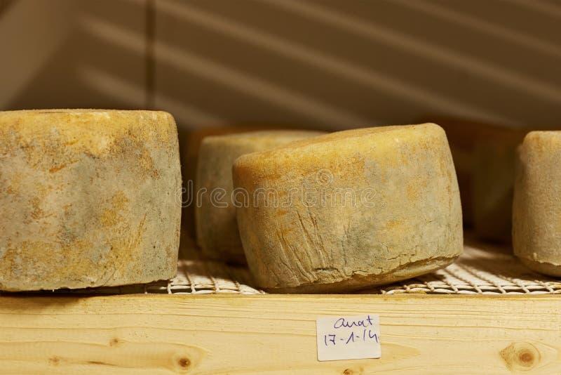 Käse, der im Lagerraum madurating ist stockfotos