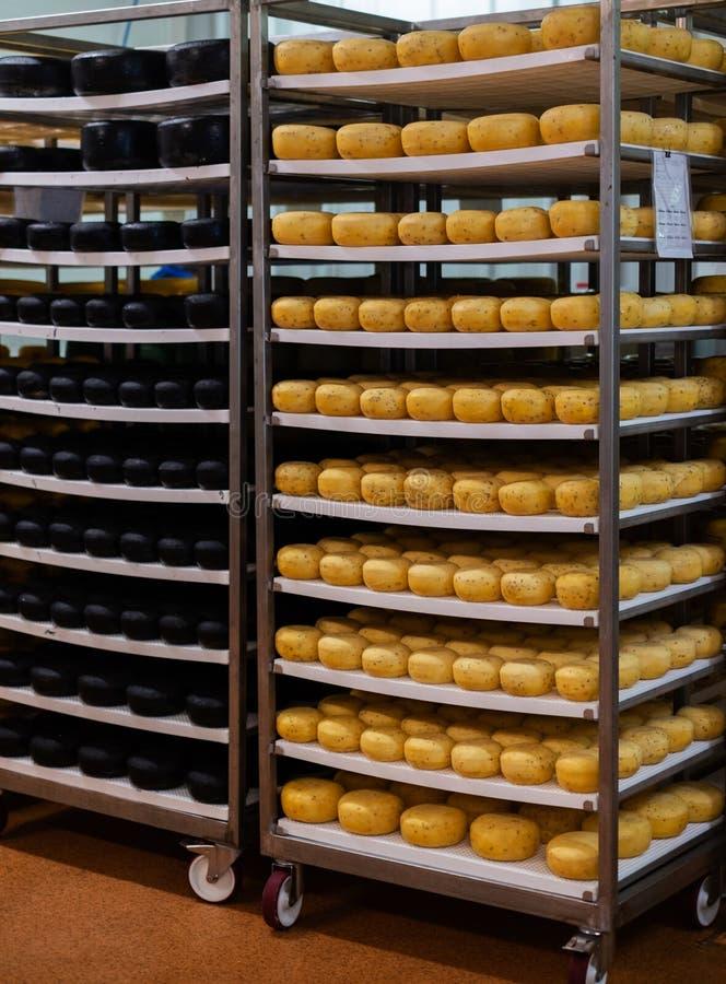 Käse in einem Lagerraum stockbild
