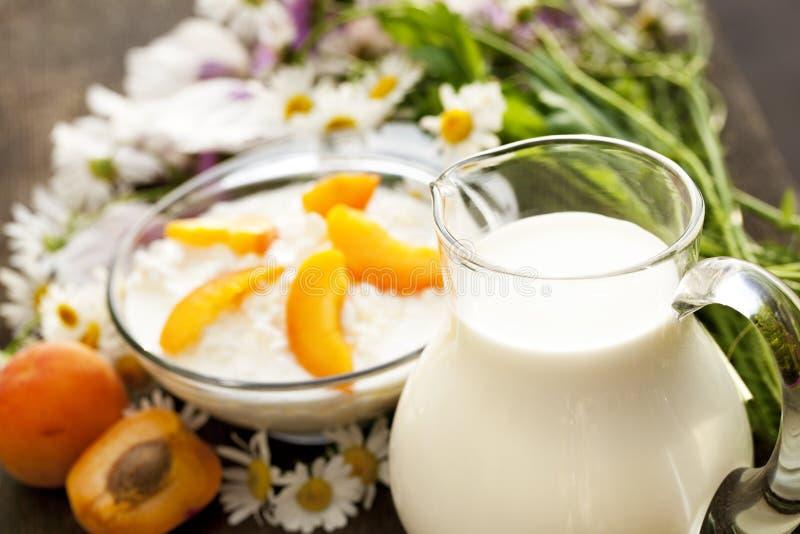 Käse und ein Krug Milch lizenzfreies stockbild