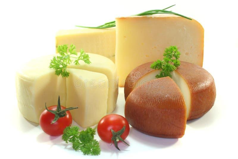 Käse-Zusammenstellung lizenzfreie stockfotos