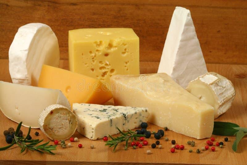 Käseaufbau lizenzfreie stockfotos
