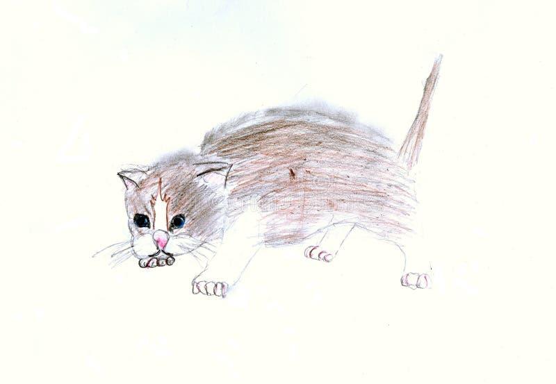 Kätzchen vektor abbildung