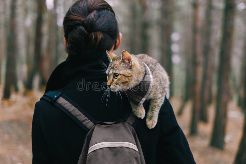 Kätzchen, das auf Schulter der Frau im Wald sitzt lizenzfreie stockbilder