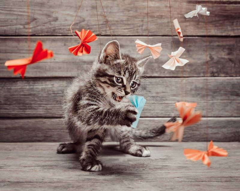 Kätzchen, das mit Papierbögen spielt stockfoto