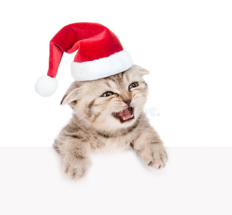 Kätzchen der getigerten Katze in rotem Sankt-Hut, der heraus wegen des Plakats schaut Auf Weiß lizenzfreie stockfotografie