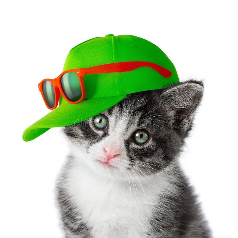 Kätzchen mit grüner Kappe lizenzfreie stockbilder