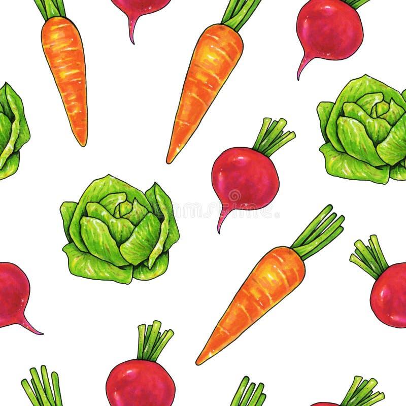 Kål för trädgårdrädisamorötter på en vit bakgrund Färgteckningsmarkörer Jordbruks- grönsak Seamless modell för design stock illustrationer