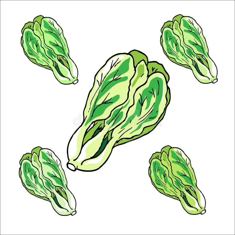 Kålgrönsaksymboler, tecknad film royaltyfri foto