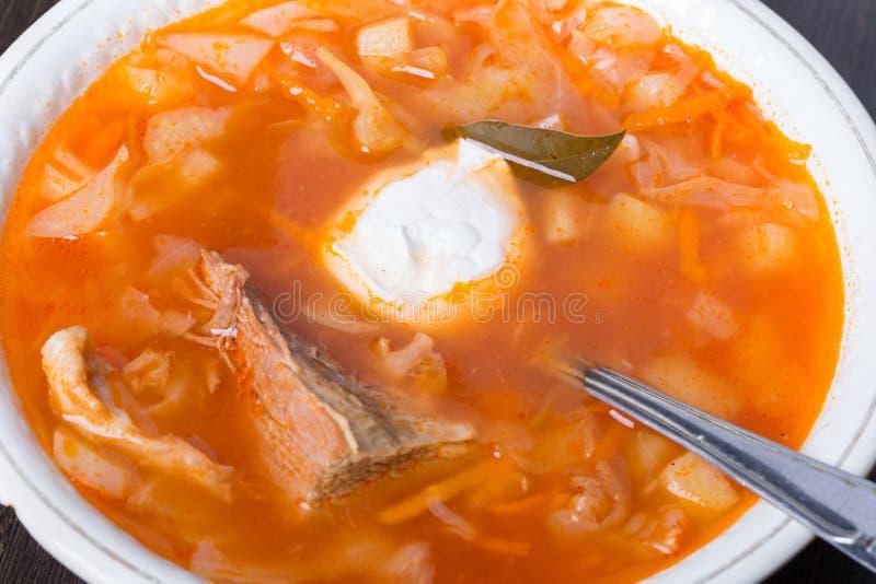 Kålsoppa traditionell kokkonstryss fotografering för bildbyråer