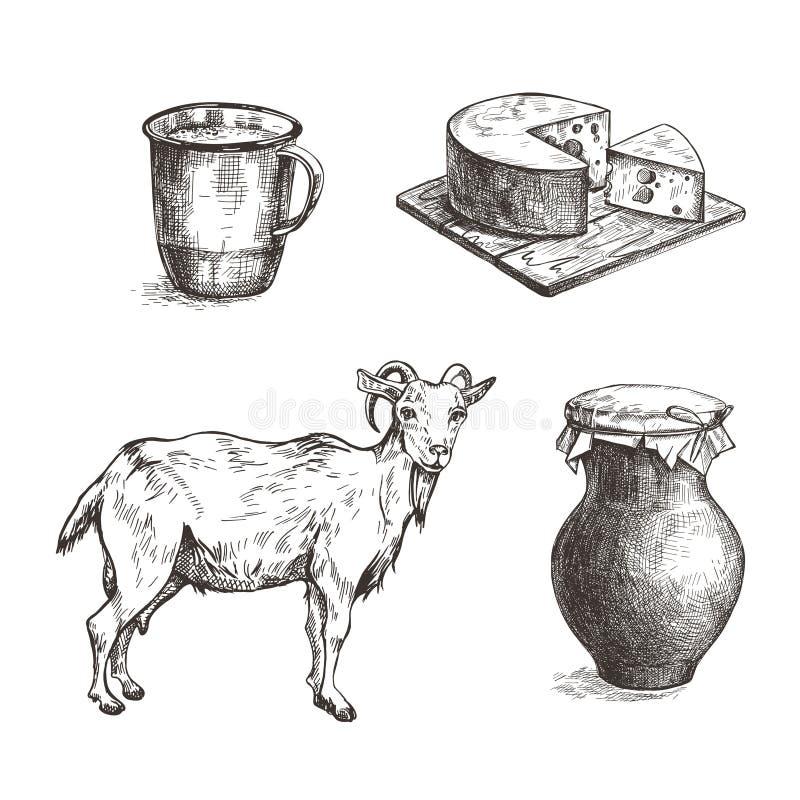 Kózka, ser, earthenware dzbanek i filiżanka, ptaka rocznik ?liczny ilustracyjny ustalony ilustracji