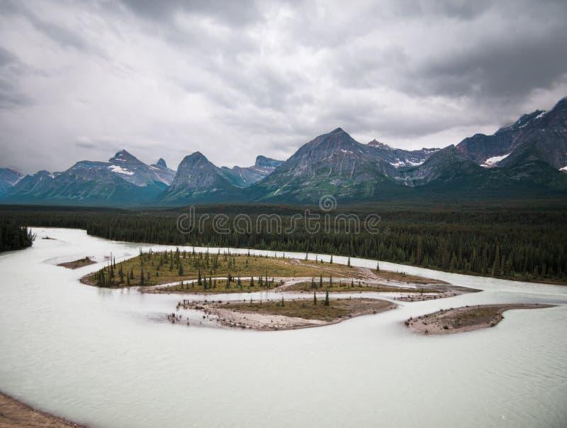 Kózki i lodowowie przegapiają na Icefield ` s Parkway w jaspisie zdjęcia royalty free