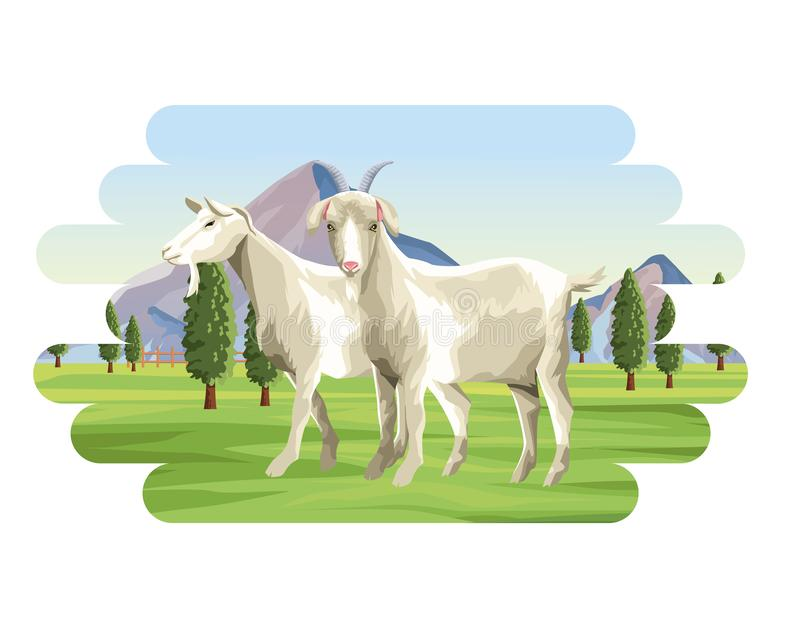 Kózki zwierzęta gospodarskie royalty ilustracja