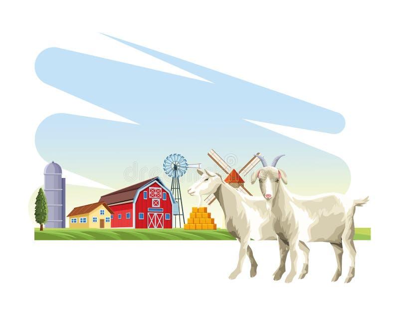 Kózki zwierzęta gospodarskie ilustracja wektor