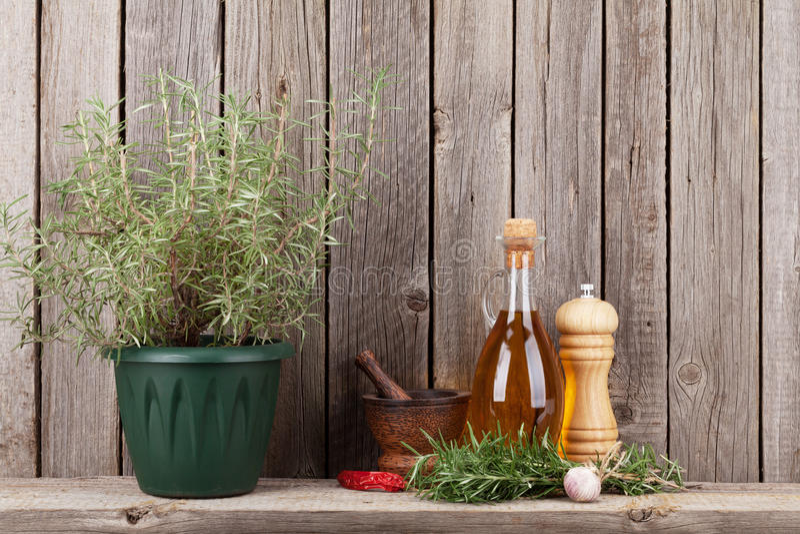 Köksgeråd, örter och kryddor på hylla royaltyfria foton
