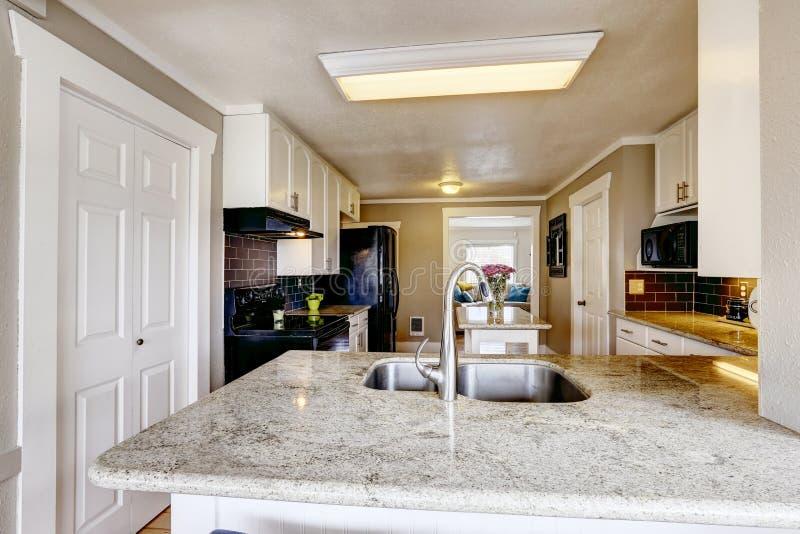 Köksskåp med granitöverkanten och stålvasken fotografering för bildbyråer