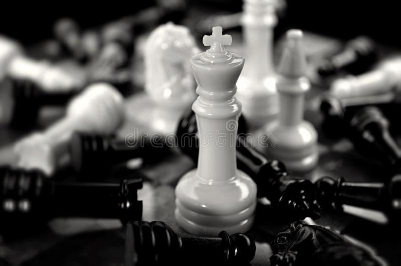 König Conquers All lizenzfreie stockfotos