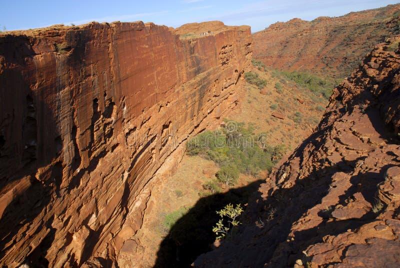 Könige Canyon stockbilder