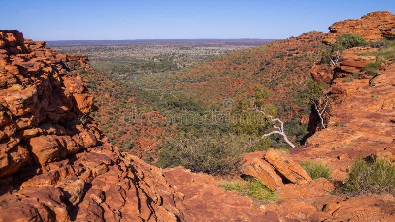 Könige Canyon, Australien stockbilder