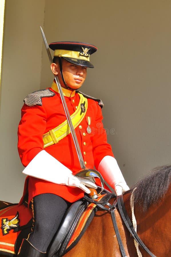Königliche Abdeckung auf dem Pferdenschützen der Palast
