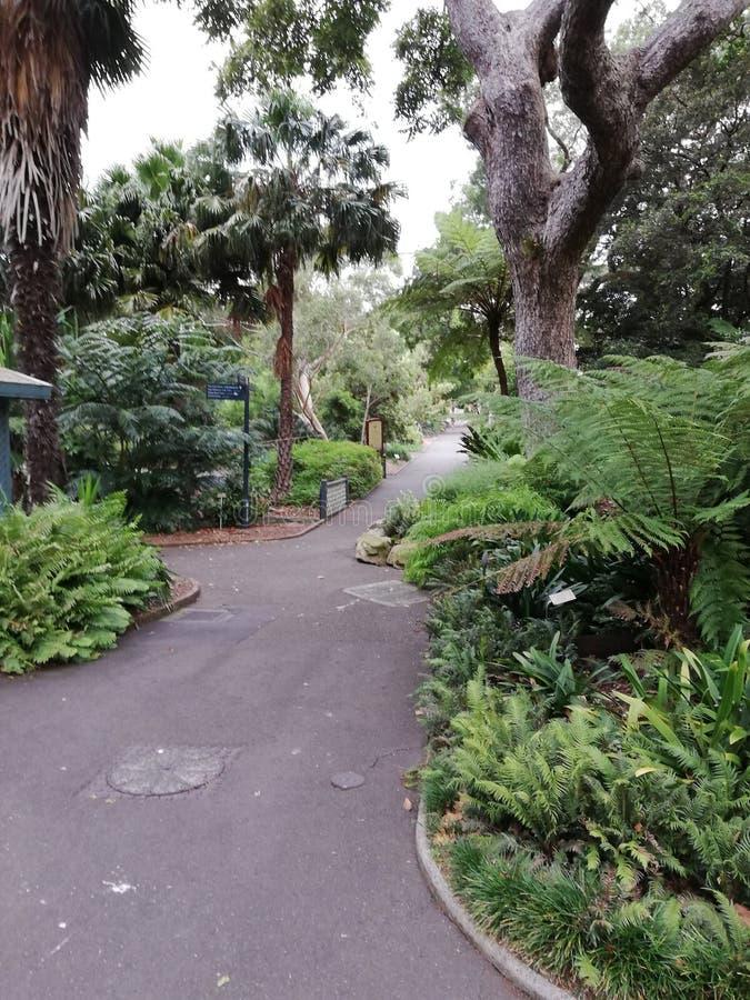 Königliche botanische Gärten stockfotos